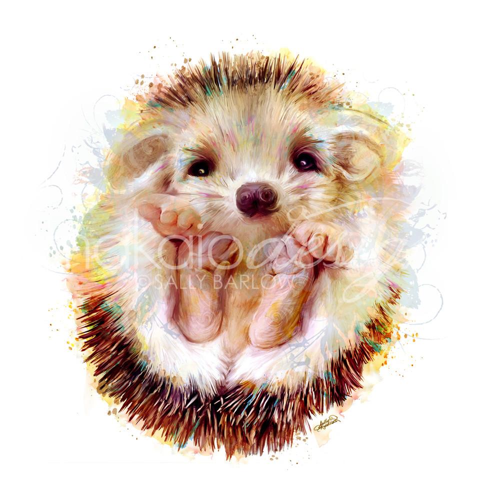 Peeko baby adorable hedgehog art painting by Sally Barlow