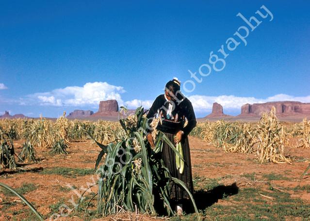 Corn Woman