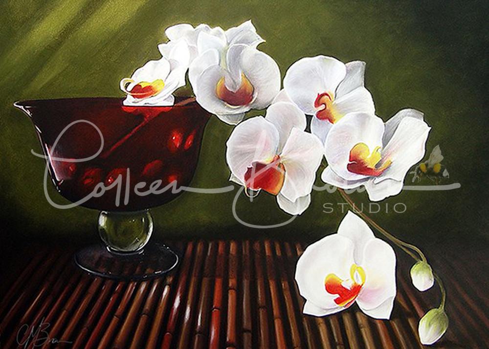 Orchid Cascade Art   Colleen Brown Studio