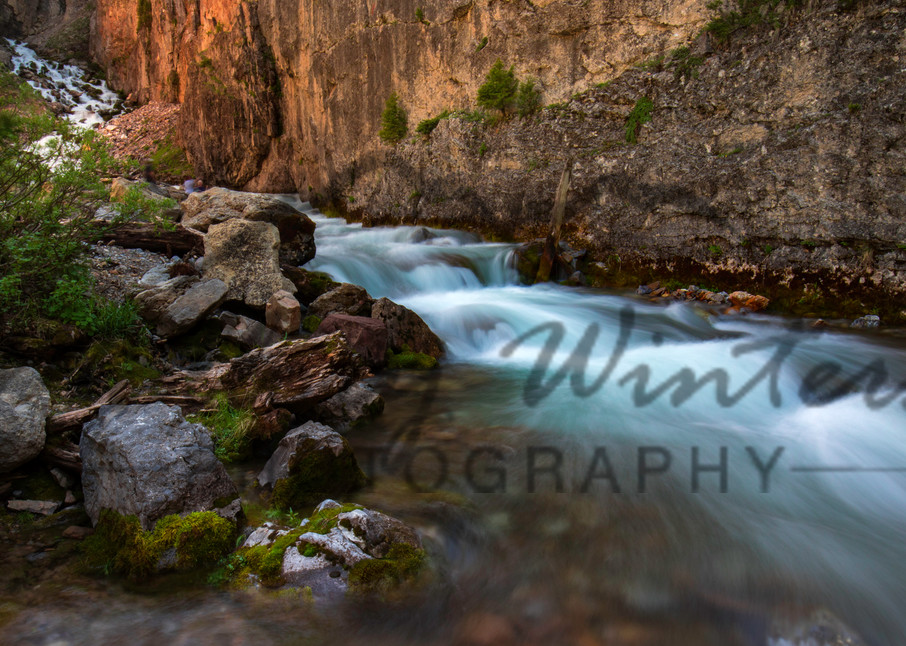 Intermittent Spring, Afton, Wy Photography Art | Mallory Winters Photography