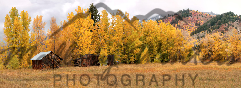 Turnerville Fall, Turnerville, WY