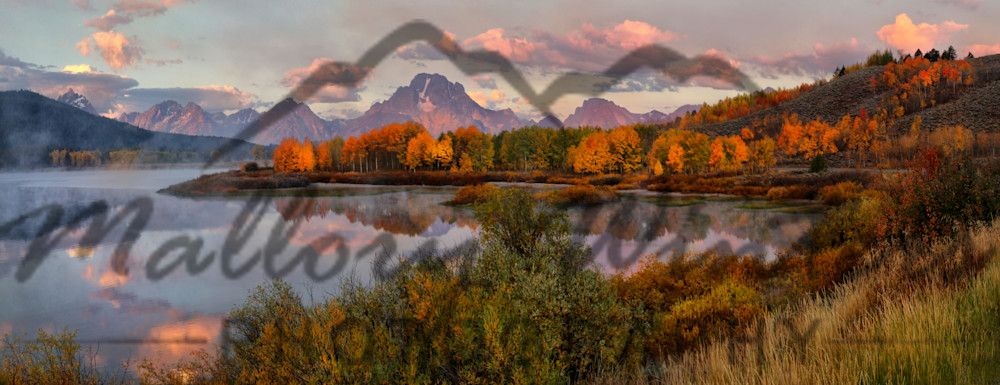 Fall At Oxbow Bend, Grand Teton National Park Photography Art | Mallory Winters Photography