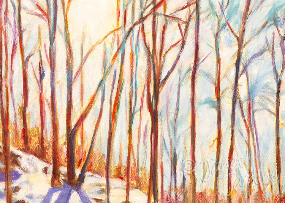 Prints of original oil painting, Winter Sunburst Glory, Rattlesnake Point, by Burlington artist Janet Jardine
