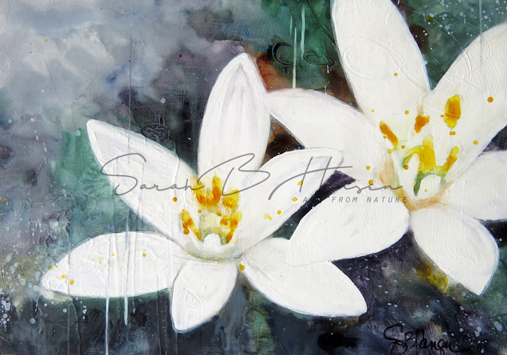 Peace A Fine Art Painting by Pacific Northwest Artist Sarah B Hansen