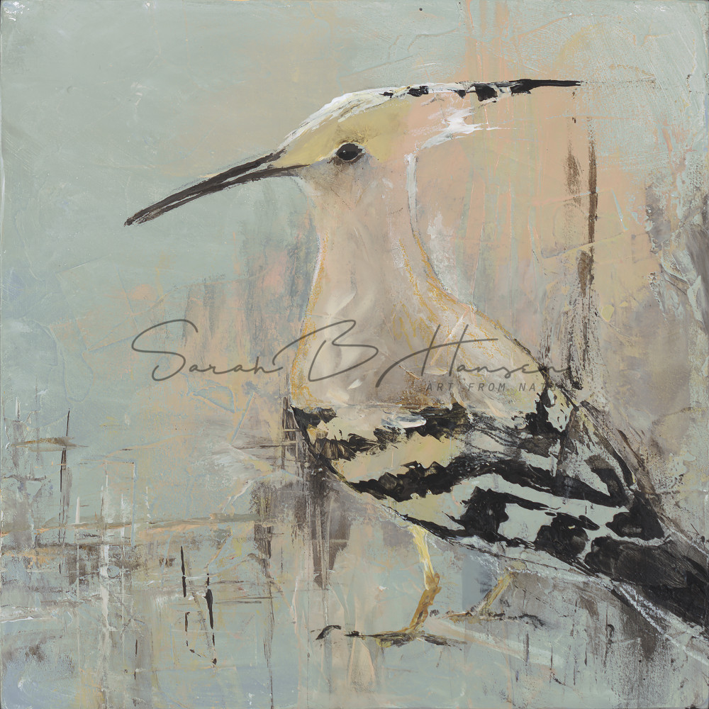 Eurasian Hoopoe, bird art by artist Sarah B Hansen