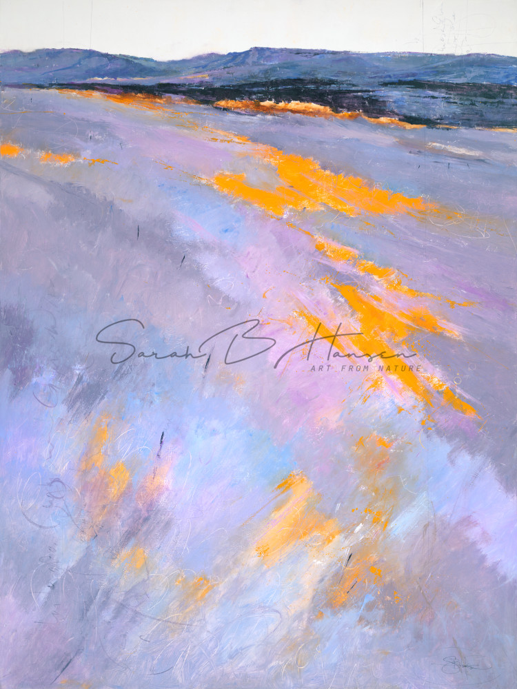 Lost in Wildflowers, original and fine art reproduction by artist Sarah B Hansen