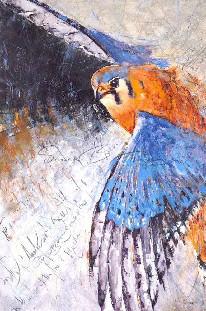 To Be Free, original and fine art prints bird art by Sarah B Hansen
