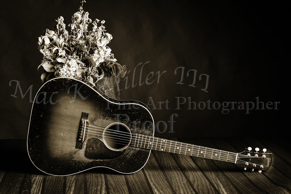 461.1834 Gibson J45 In Black and White