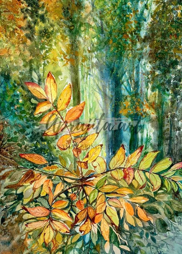 """""""Golden Leaves"""" Art Print by Aprajita Lal"""