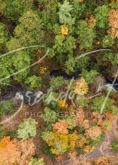New York Autumn Art | Brandon Hirt Photo