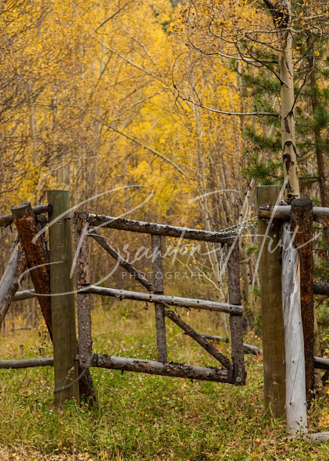 Breck Fence Art | Brandon Hirt Photo
