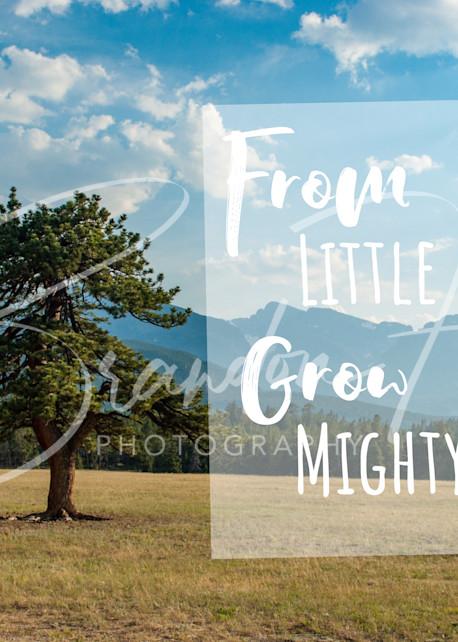 Rocky Mountain National Park Art | Brandon Hirt Photo