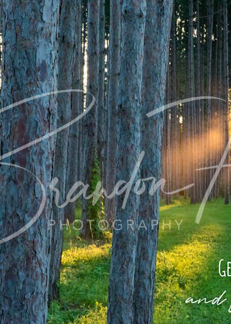 Sunrays Art | Brandon Hirt Photo