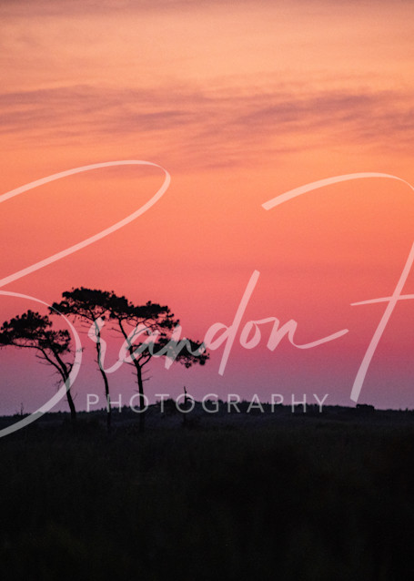 Gordon's Pond sunrise over Delaware