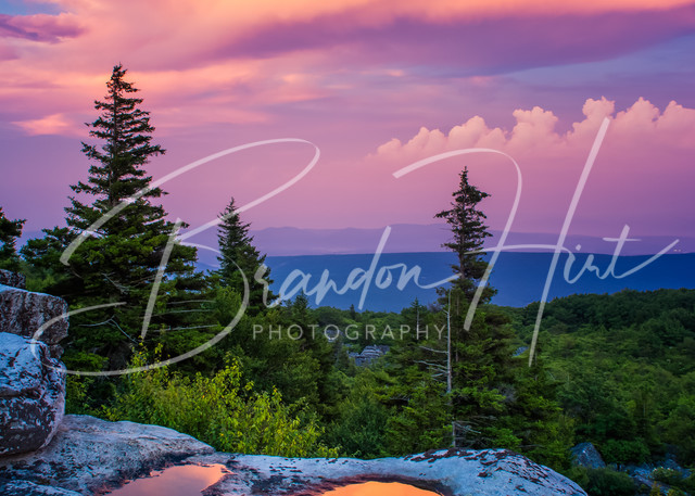 Dolly Sods Sunset West Virginia