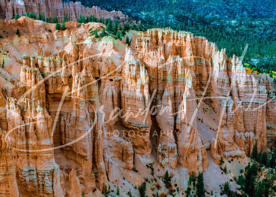 Bryce Canyon Art   Brandon Hirt Photo