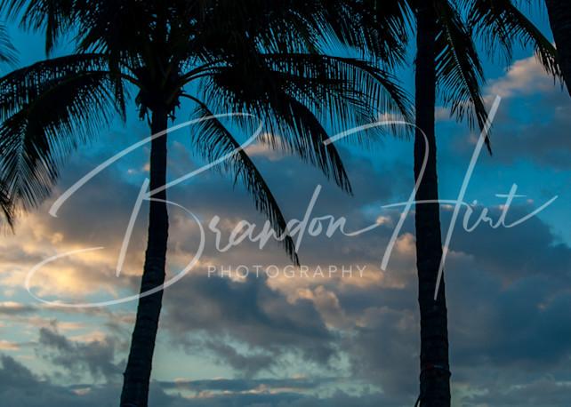 Key West  Art | Brandon Hirt Photo