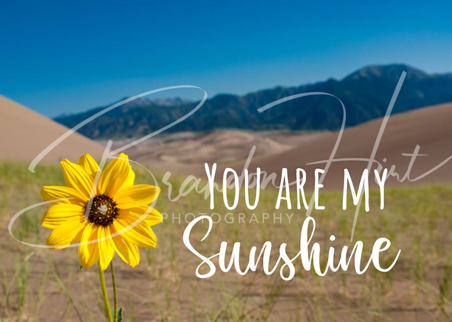 Sunshine Art | Brandon Hirt Photo