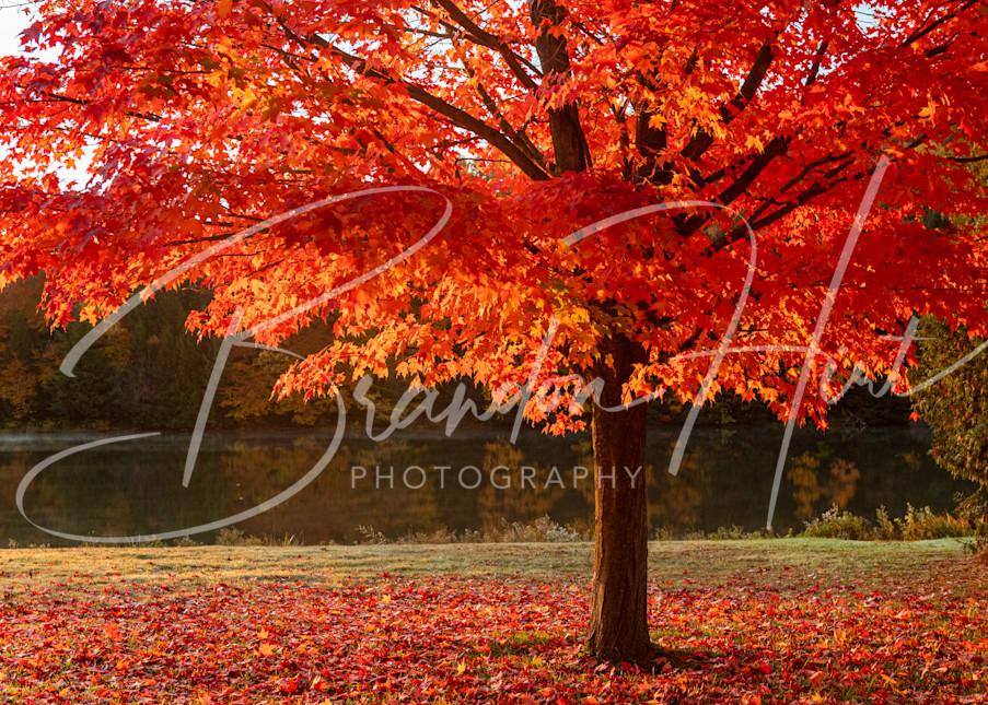 Lake Rowena in the fall time in Ebensburg, Pa