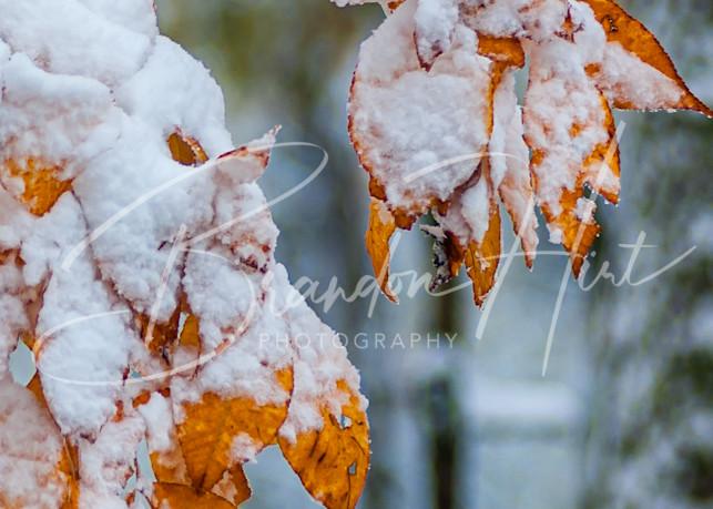 First Snowfall over Virginia's Shenandoah Mountains