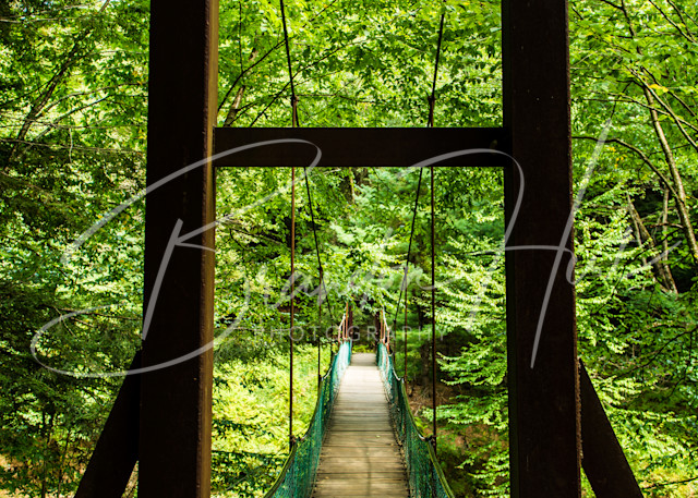 Cook Forest Suspension Bridge Art | Brandon Hirt Photo