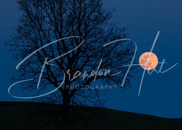 Pink Super Moon Twilight Art | Brandon Hirt Photo
