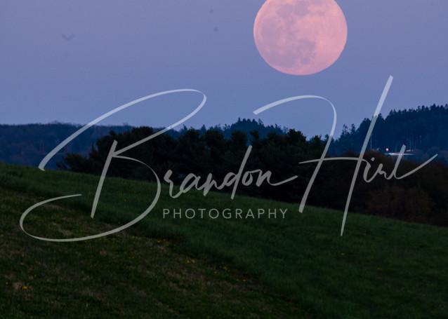 Pink Super Moon Field Art | Brandon Hirt Photo