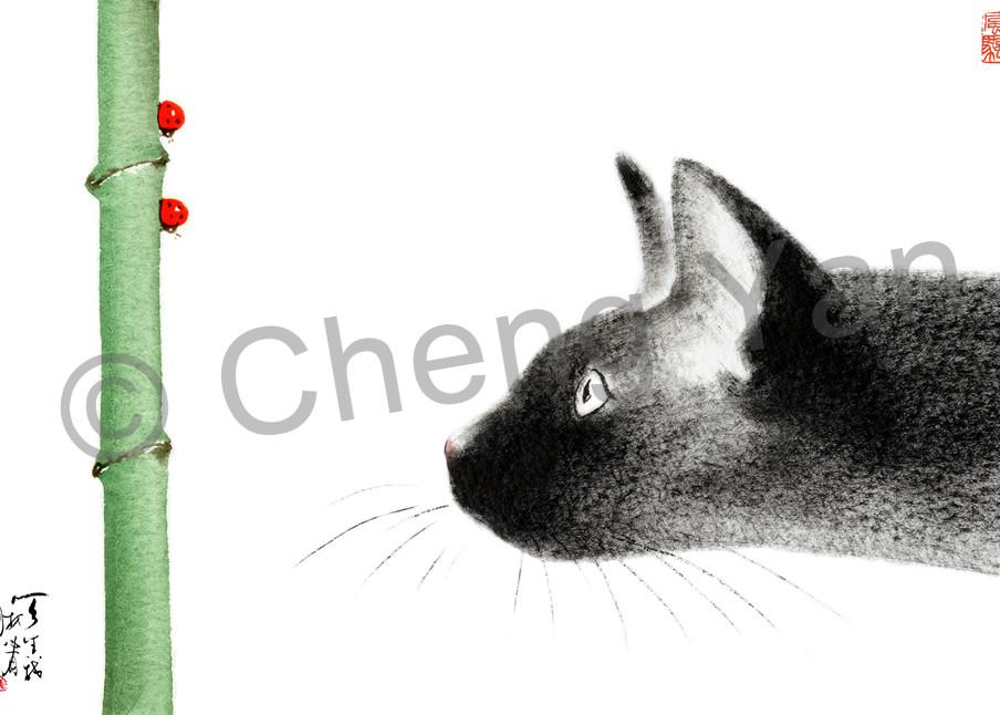 Cats 001 Photography Art | Cheng Yan Studio