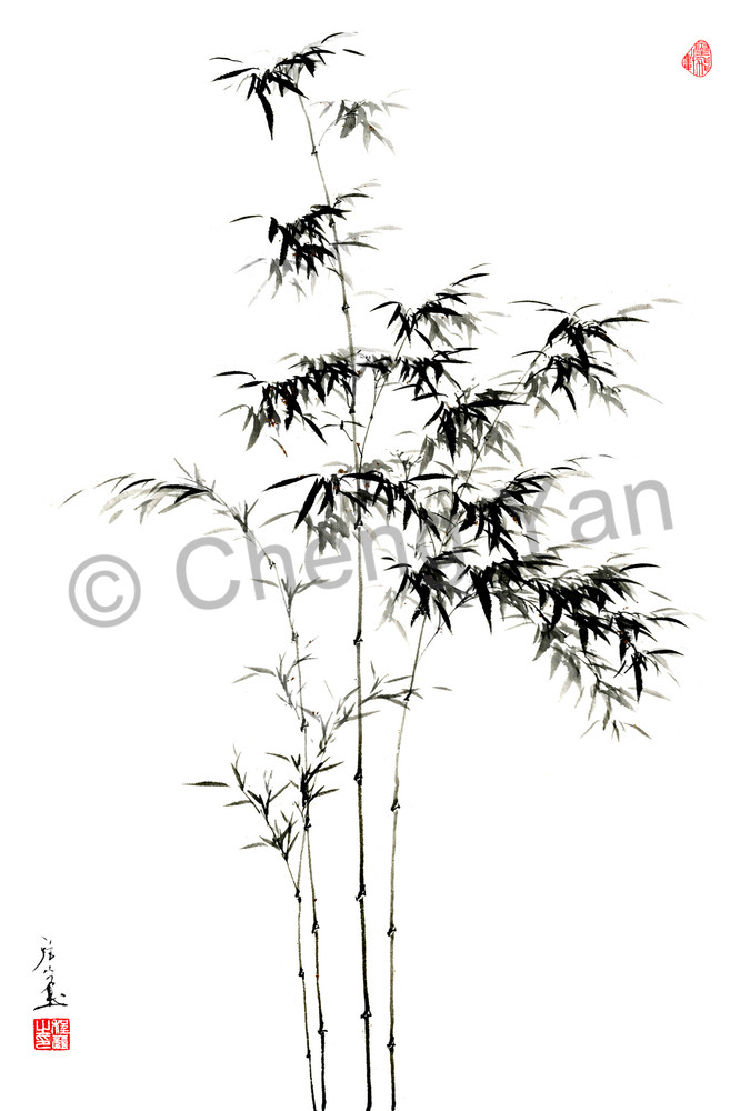 Bamboo 004 Photography Art | Cheng Yan Studio