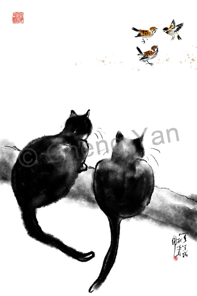 Cats 064 Photography Art | Cheng Yan Studio