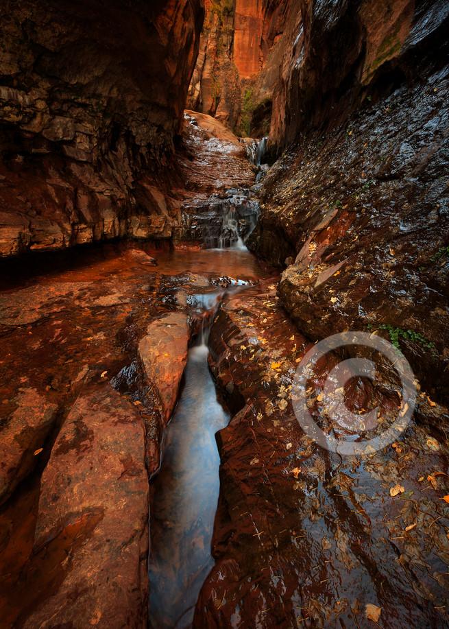 Water Canyon Narrows Zion Art Prints
