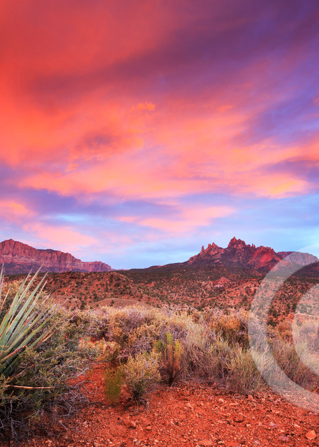 Eagle Crags Zion Sunset Art Prints