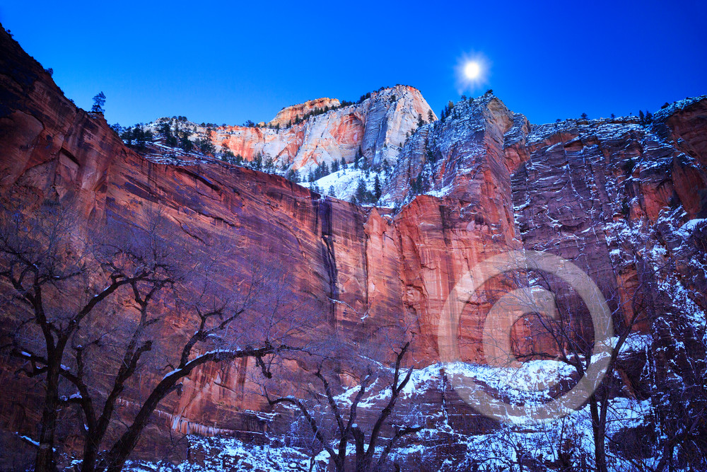 Zion Winter Moon Art Prints