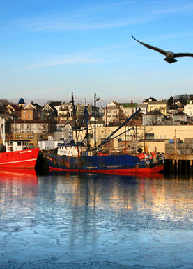 gloucester harbor panorama fishing boats gull