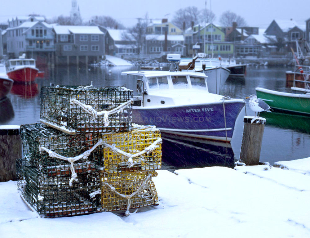lobstertrap snow seagull fishing boats rockport harbor
