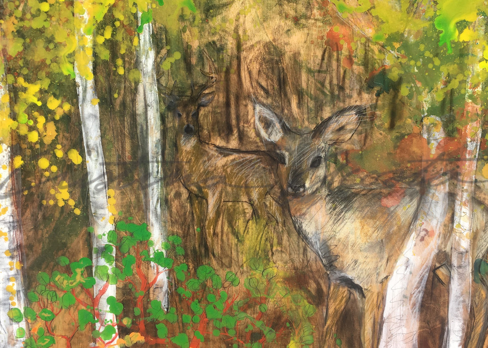 Deer in Forest with Manzanita