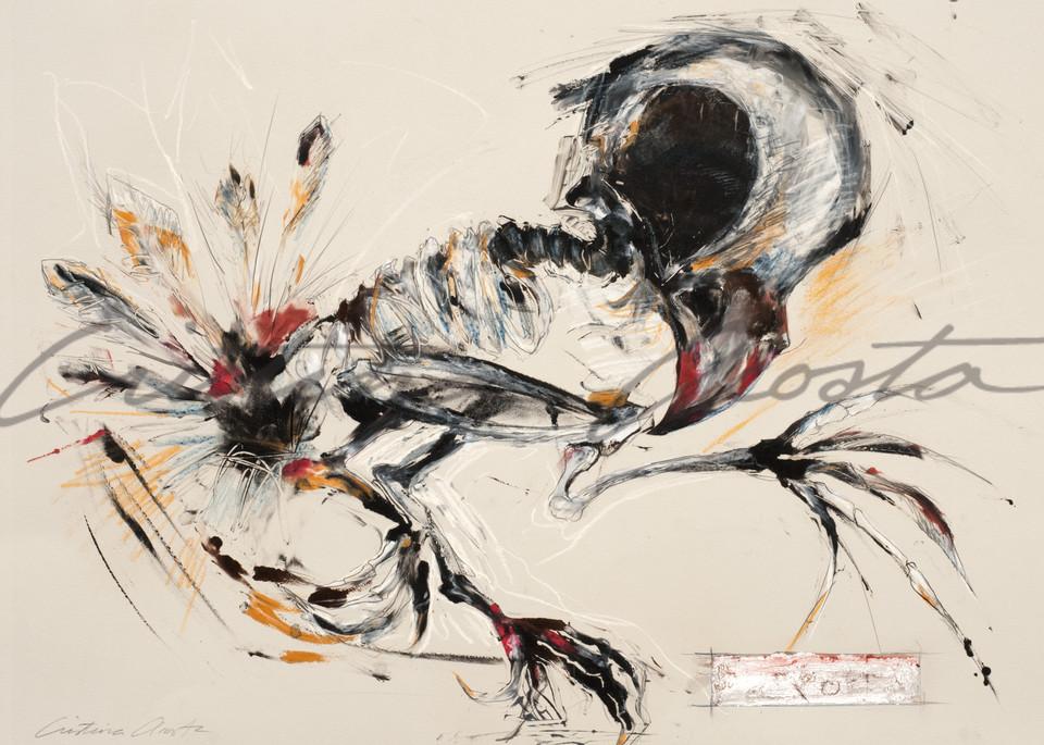 Bird Dancer 1