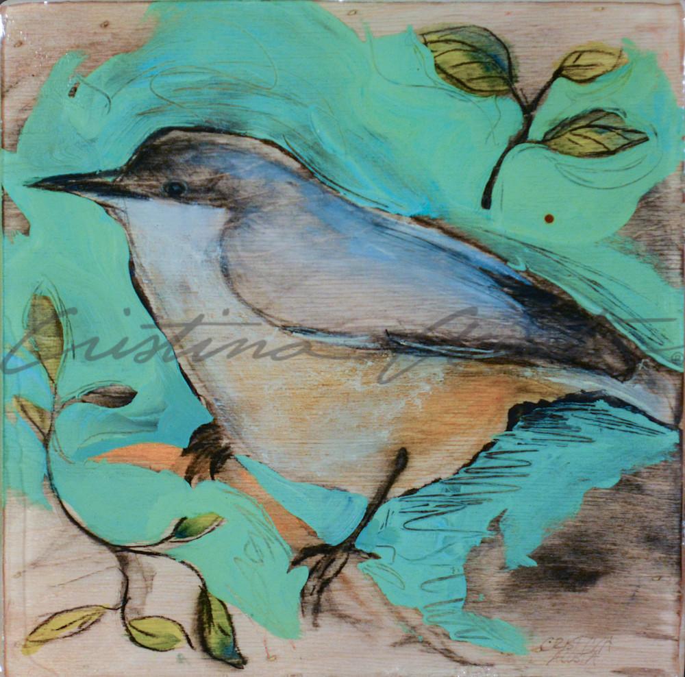 Western Bluebird Art   Cristina Acosta Art & Design llc