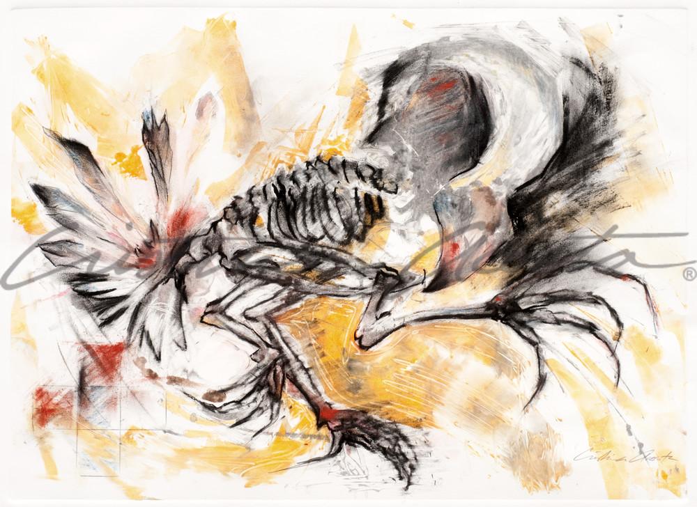 Bird Dancer 2 Native American Indian Spirit Dancer
