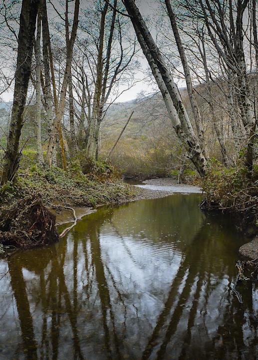 Landscape, Photography, California, Marin County,
