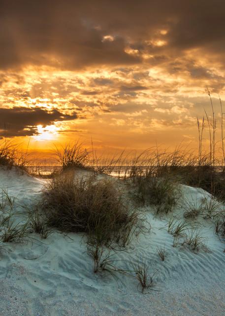 Beach Dunes Sunrise