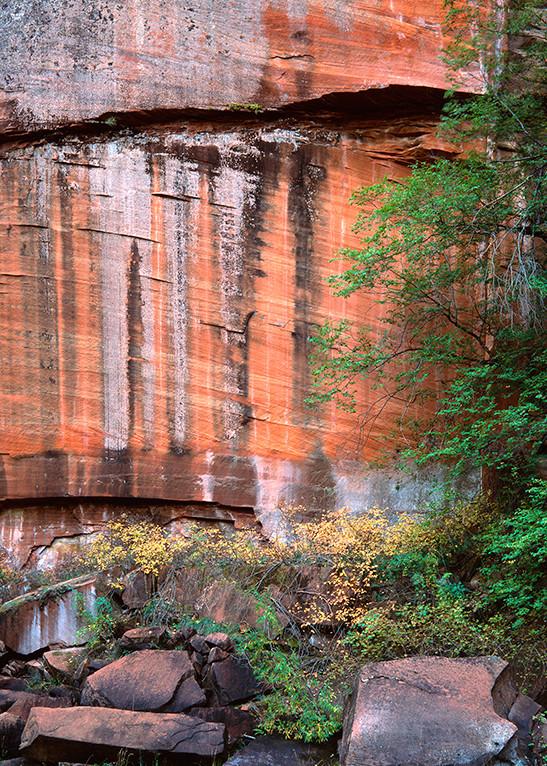 Nature 's Mural Art | Fine Art New Mexico