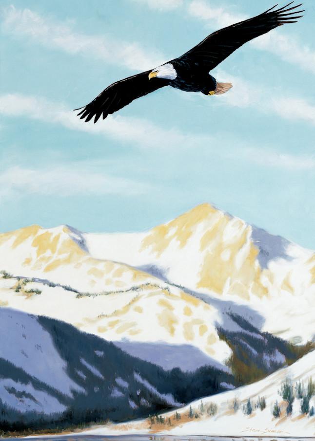 Bald Eagle Soaring Over Twin Lakes