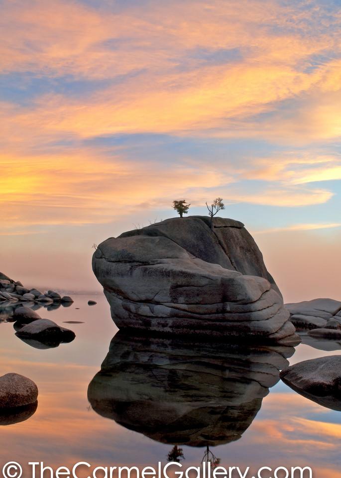 Bonsai Rock Reflections