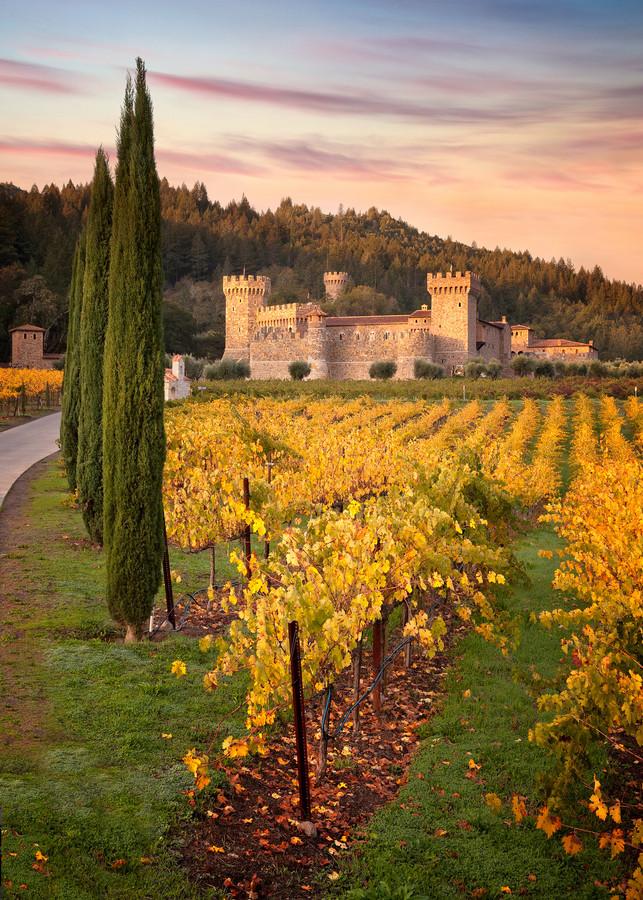 Sunrise Castello di Amorosa