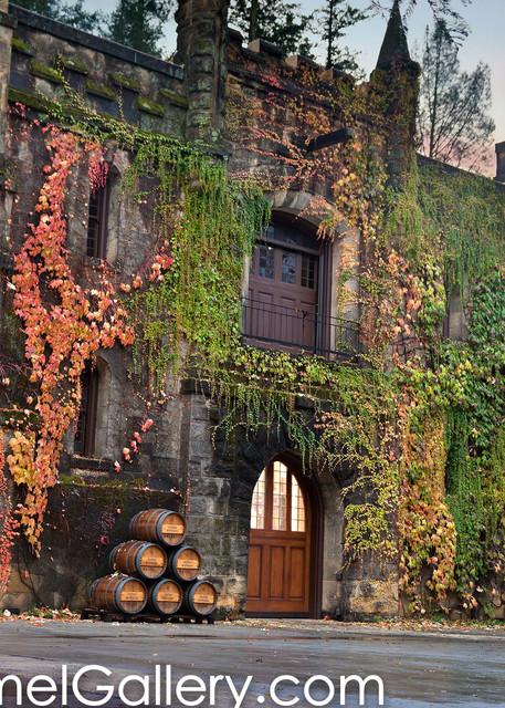 Nightfall Chateau Montelena
