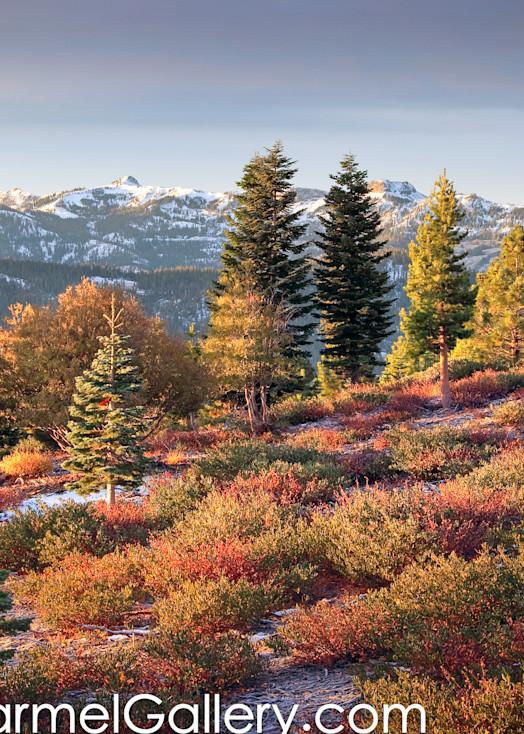 Autumn View Pacific Crest