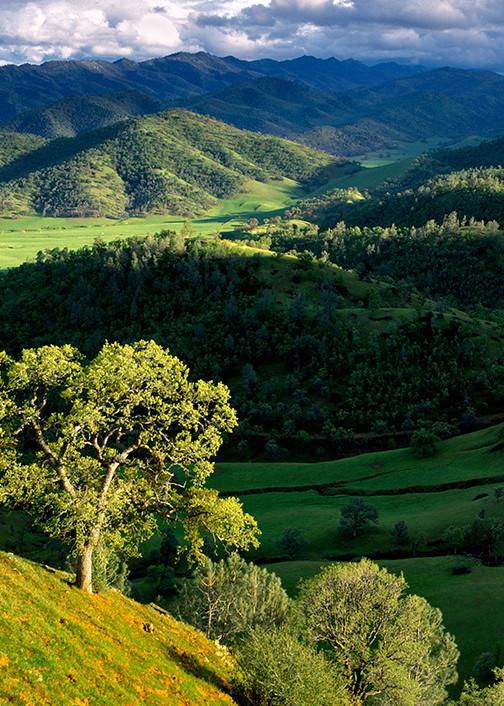 Bear Valley Hills Art | Fine Art New Mexico
