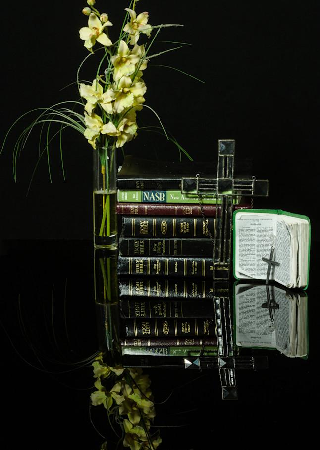 Fine Art Photographs of Flower Reflections on Black Plexiglass by Michael Pucciarelli