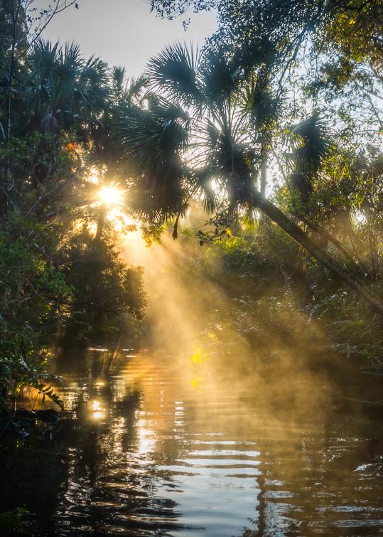 Chassahowitzka River, Florida, Landscape, Photography, Sunrise